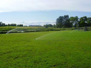 systemy nawadnianie ogrodów
