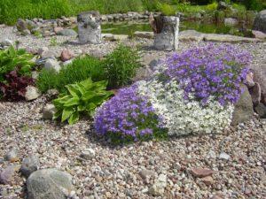 ogród pomorskie