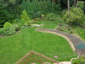 trawnik gdynia