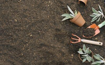 Prace ziemne a zakładanie ogrodów